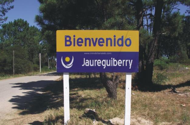 20131222183110-jaureguiberry-2012.jpg