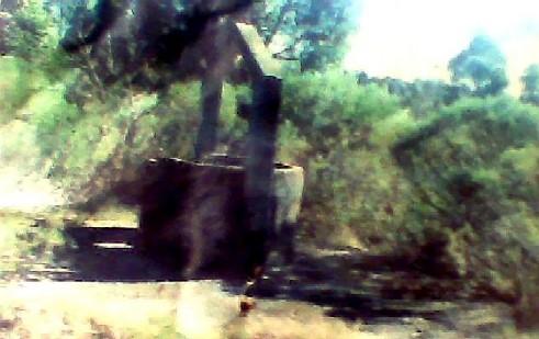 20101230133414-pozo-salinas-2006.jpg