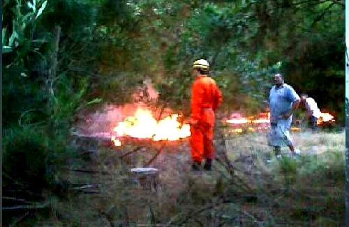 20110105202500-incendios.jpg