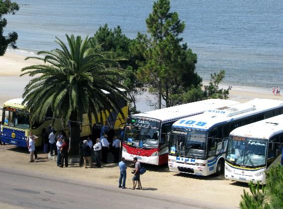 20120224120711-omnibuses.jpg