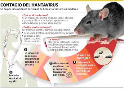 20180131153859-antavirus-raton.jpg